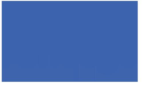 Ameego Insurance Logo